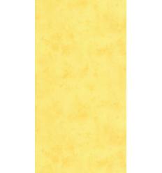 Papier Peint ES19040