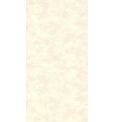 Papier Peint UNI19075