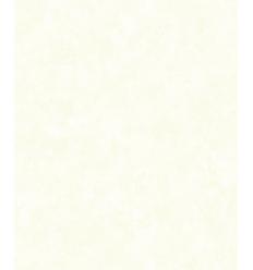 Papier Peint UNI19087