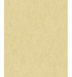 Papier Peint EC19038