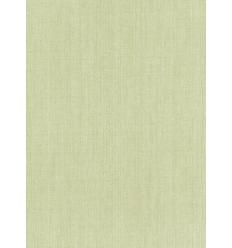 Papier Peint UNI19022