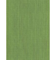 Papier Peint UNI19024