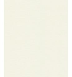 Papier Peint UNI19016