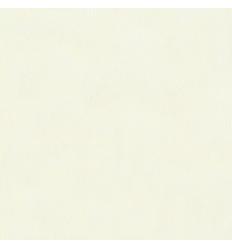 Papier Peint UNI19055
