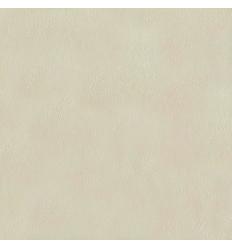 Papier Peint UNI19056