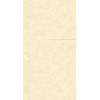 papier-peint-uni19103