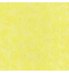 Papier Peint EC19104