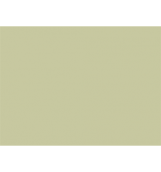Sophora n°114