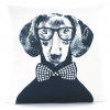 coussin-animals-story