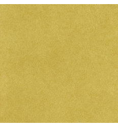 Corail Blanc n°44