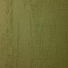 acacia-n84