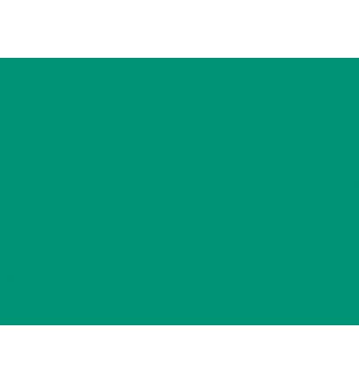 eucalyptus-n201