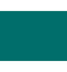 Algue bleue n°205