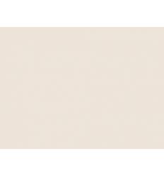 Crème Délice n°234