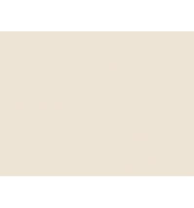 fleur-de-coton-n245