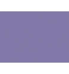 Neptune n°282