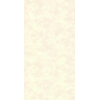 es17019
