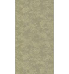 Papier Peint ES19032