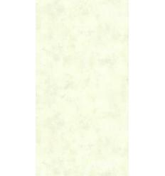 Papier Peint ES19036
