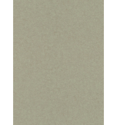 Papier Peint EWPI14003