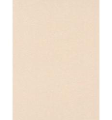 Papier Peint EWPI14002
