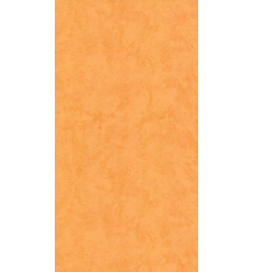 Papier Peint ES19017