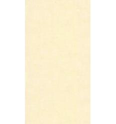 Papier Peint UNI19001
