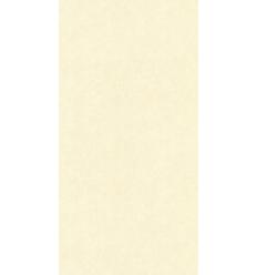 Papier Peint UNI19074
