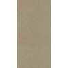 uni17075