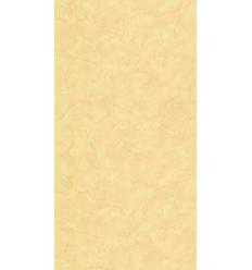 Papier Peint UNI19102