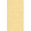 uni17088