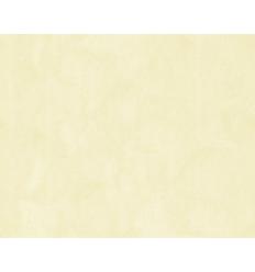 Papier Peint EC19112